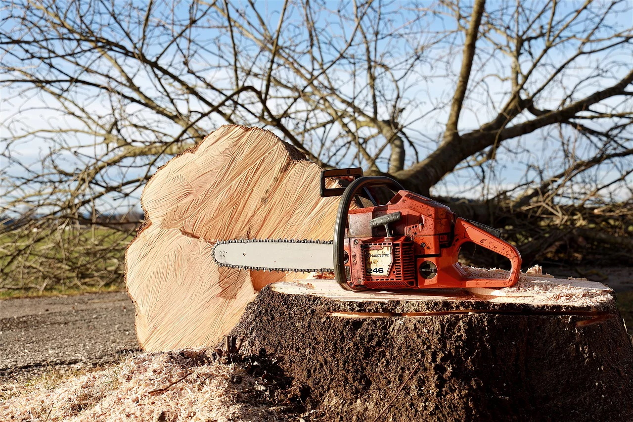 chainsaw-4815949_1280